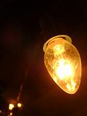 Tis The Season (allidaps2) Tags: christmas xmas light cold macro christmaslight xmaslight