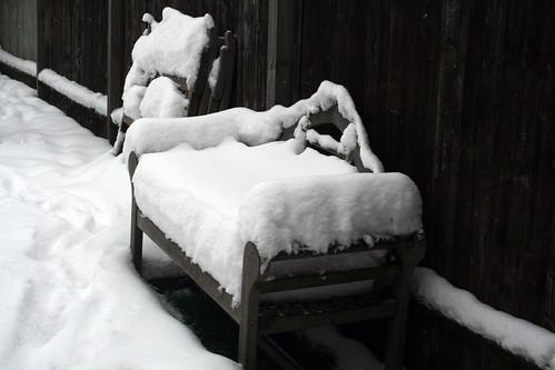 Snow-Nov_10_2