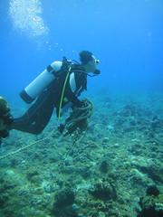 小琉球志工清除魚網