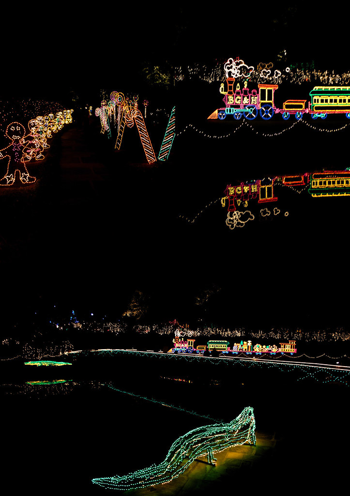 Bellingrath Gardens Christmas lights 16