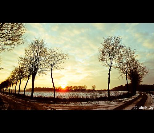 _wintersun