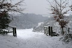 A Wintery Walk - 2 December 2010 (judibluemed) Tags: snow cold westsussex arundel dogwalking photogarden impressedbyyourbeauty 2december2010 30cmssnow