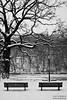 Berlin (GZZT) Tags: park schnee winter blackandwhite bw snow berlin landscape bank sw friedrichshain baum gwb bänke volksparkfriedrichshain winterlandschaft bln schwarzweis guessedberlin gzzt martinbriese gwbthomaslautenschlag