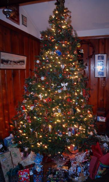 Tree 2010