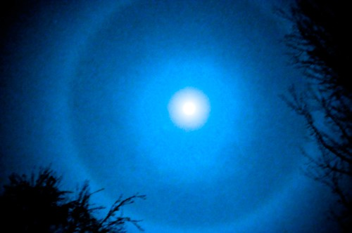 MoonRing_0425