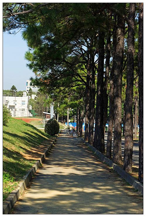 清華大學_086.jpg