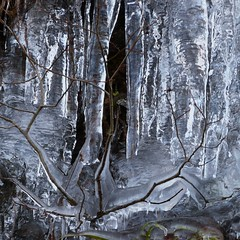palais de glace (raym5) Tags: glace