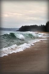 Surf's Up (laura's POV) Tags: ocean sea beach sand shoreline wave shore kauai mygearandmepremium mygearandmebronze mygearandmesilver mygearandmegold mygearandmeplatinum dblringexcellence tplringexcellence lauraspointofview lauraspov