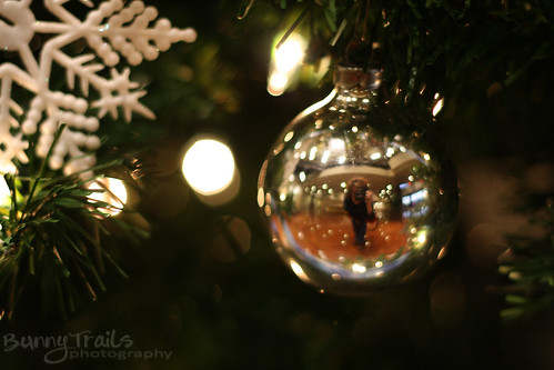 349-ornaments- reflection