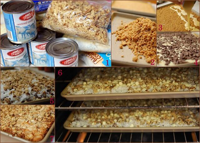 2010-11-24 magic cookie bars