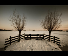 Winter willows at sunset (Focusje (tammostrijker.photodeck.com)) Tags: winter sunset two white snow cold holland ice netherlands dutch fence landscape meadow symmetry willow jandebouvrie