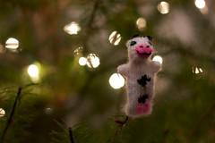 happy cow! (Klara Kim) Tags: christmas tree cow puppet finger ornament peruvian