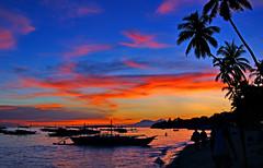 Bohol, Philippines (Randy'sPhotography) Tags: sunset beach sony philippines bohol coconuttree alpha350 randysphotography