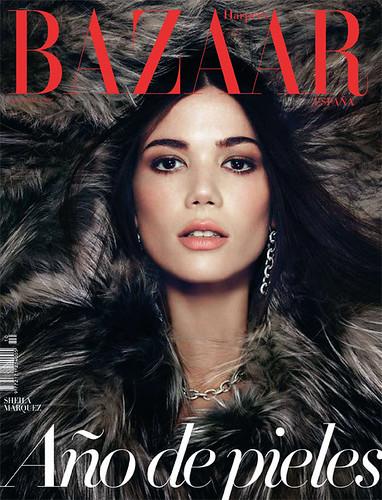 Harper's Bazaar 10