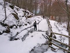 Escursionismo Laga - I Laghetti di Poggio d'Api
