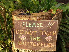 Please don't touch the Butterflies (Bradclin Photography) Tags: sign butterflies handwritten childlike pleasedonttouch