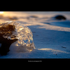 """Poor Yorick (Alien?)! I knew him, Horatio"" (stella-mia) Tags: winter sunset sun snow ice norway skull dof bokeh alien explore getty frontpage christal hamar sn mjsa iceicebaby 2470mm hightlight pooryorick  canon5dmkii iceskull pooryorickiknewhimhoratio annakrmcke christalskull"