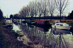 Day #1099 (cazphoto.co.uk) Tags: trees winter reflection water boats lumix canal crossprocess curves january panasonic 030111 barges project365 c41e6 chelmerandblackwaternavigation sceniclocation dmcgf1 20mmf17asph project36612011 beyond1096 2011th01