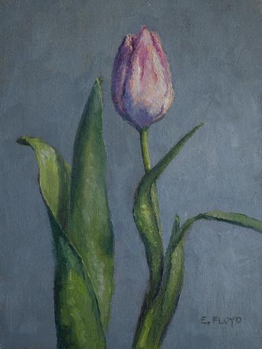 20110107 tulip 8x6