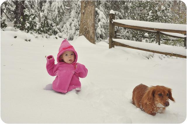 snowedin01