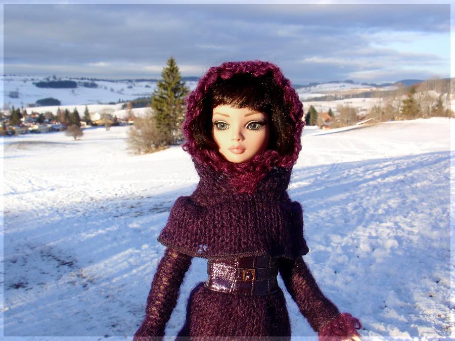 Vacances dans la neige, dans le Jura 5345927499_a7835a841b_o