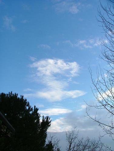 azzurro 11 jan 2011
