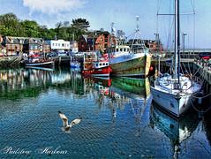 Padstow Harbour (B Gilmour.) Tags: water reflections boats cornwall harbour seagull ships rick stein padstow mygearandmepremium mygearandmebronze mygearandmesilver mygearandmegold