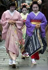 Hatsuyori () 2011 (tad64) Tags: maiko geiko geisha kaida    takamari gionkoubu takahina takasuzu    inoueyachiyo  hatsuyori