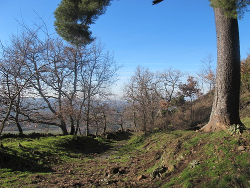 La Via dei Sepolcri - Parco del Tuscolo