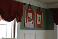 Dining room-valance & botanical pear prints (kizilod2) Tags: red white green art botanical aqua pears shades sage decorating pear prints plates paneling seafoam valance hedrick windowtreatments pearsofnewyork