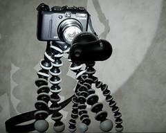 Drawn to the Light (dibytes) Tags: camera light collingwood january 365 gorillapod dailyshoot 3652011 ds426