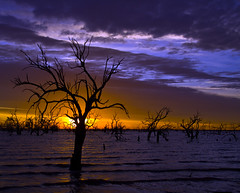 IMG_0001 (Bianca Ho) Tags: lake pamamaroo
