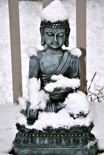 Edmonton home Snowy Buddha Pat 100