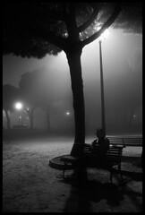 Parque y Niebla (AColaso) Tags: parque espaa angel canon farola huelva bn pinos neblina niebla mazagn 400d acolaso colaso
