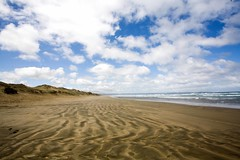 Northland, NZ (C) 2010