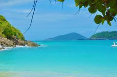 St Thomas (questforfire2010) Tags: trees sea mountains green beach leaves rocks tropical caribbean sands whitesand stthomas