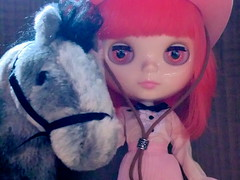 pony & singa