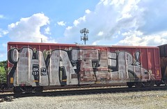 Hater (MC. Squared) Tags: freight train bkty graffiti wholecar hater