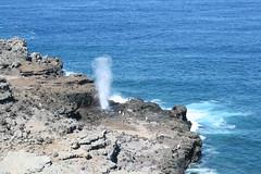 IMG_8598 (avsfan1321) Tags: ocean usa hawaii unitedstates unitedstatesofamerica maui blowhole nakalele nakaleleblowhole nakalelepoint