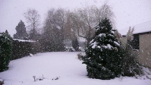 snowtuesafternoon