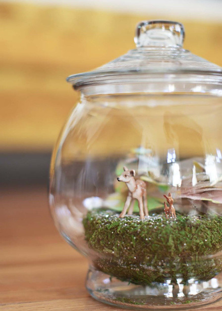 the sweetest holiday terrarium