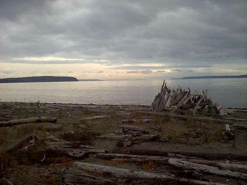 View of the driftwood fort