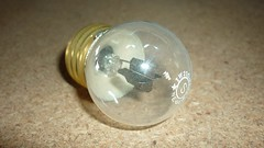 CISSELL LB70 220V Light Bulb Pilot #1375
