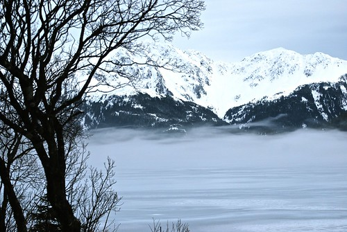 Fog on Lake Eyak