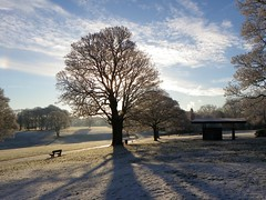 Winter Wonderland (DianneB1960.) Tags: park winter snow cold frost hoarfrost local icy sthelens hoar sherdleypark