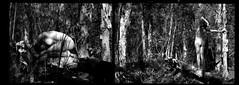 (adrienne_helene) Tags: shadow blackandwhite bw woman film nature girl beautiful beauty muscles grass female forest naked nude blackwhite pretty peace natural thing bare gorgeous butt pale dirt ribs bones fetus form spine nudewoman forestfloor fetal fetalposition androgynous humanform femaleform filmphotography darkshadow filmphotos heavycontrast heavyshadow palebody