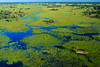 Botswana-070625-164 (Kelly Cheng) Tags: africa travel blue color colour green tourism nature water sunshine horizontal river landscape daylight colorful day outdoor vivid sunny delta nobody nopeople botswana colourful copyspace okavangodelta traveldestinations pickbykc