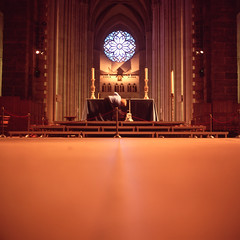 (patrickjoust) Tags: new york city nyc urban woman usa ny west color 120 6x6 tlr film church window glass saint st rose stone analog america john square lens us reflex focus long exposure candles fuji mechanical cathedral manhattan united side release gothic north patrick twin slide cable cleaning stained divine mat upper chrome 124g medium format states manual gotham expired 80 joust alter fujichrome e6 yashica 220 estados astia 80mm 100f f35 reversal unidos yashinon autaut patrickjoust