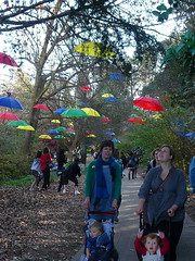 Runaway Umbrellas (Graham 1947) Tags: canberra act 2010