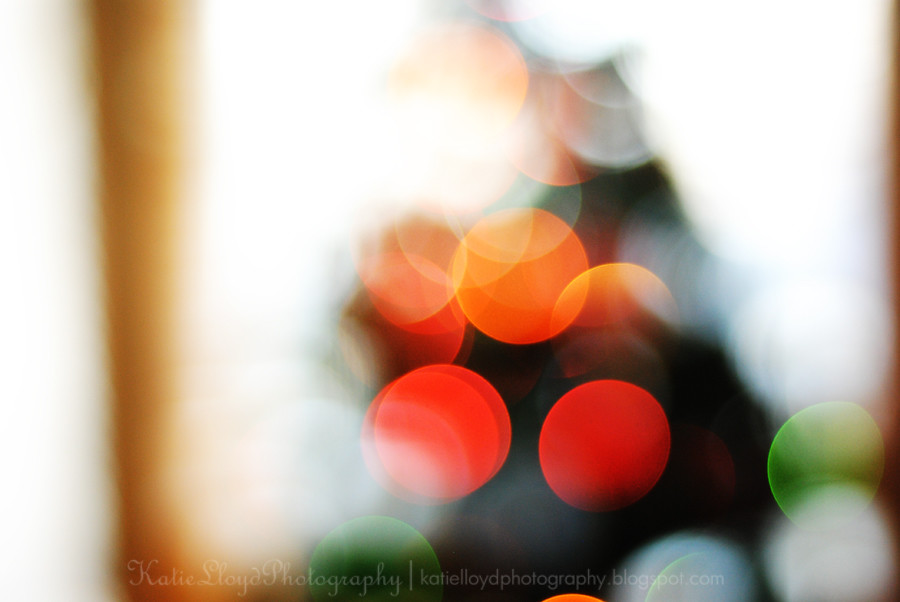 Tree-bokeh-big